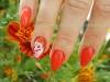 Naturnagelverstärkung in rot mit Malerei